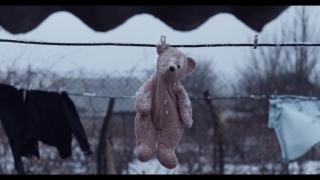 Revelaţii penibile la MMJS despre violenţa în familie: dacă există decese, deci... se moare!