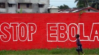 Revoltă la Crucea Roşie! Şi-au tras 5.000.000 de euro din fondurile pentru Ebola