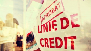 Jale - explodează dobânzile creditelor în lei?