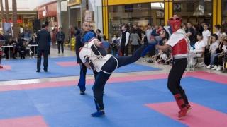 România a dominat Campionatul European de Kung-Fu