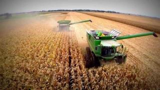 România - locul I în UE la suprafaţa cultivată şi la producţia de floarea-soarelui