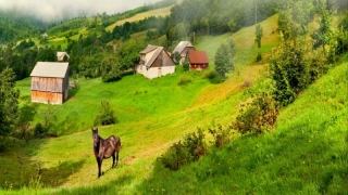 România se promovează la Târgul de Turism din Londra