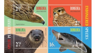 România și Administraţia Poştală a ONU - emisiune comună de timbre