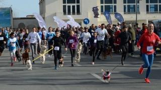 """ZIP ESCORT și EXCLUSIV AUTO, susținători ai """"CROS GERILĂ"""", Proiectul Trident Triathlon Team"""