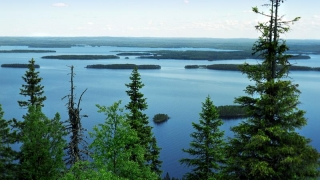 Rusia cumpără proprietăți în Finlanda, pentru a găzdui militari, la nevoie