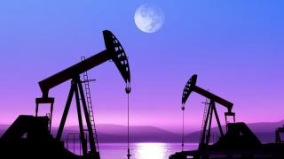 Rusia și Arabia Saudită îngheață producția de petrol, aflată aproape de maxime-record