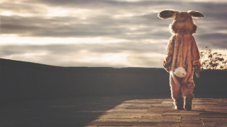 Iepurașul sărac: prima de Paște - 100 lei