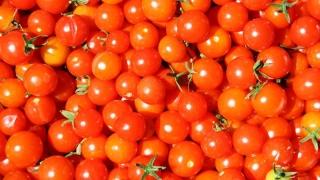 S-au retras 20 de tone de roşii cu reziduuri de pesticide