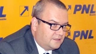 Contracte fictive pentru finanțarea campaniei PNL în 2008, recunoscute în instanță