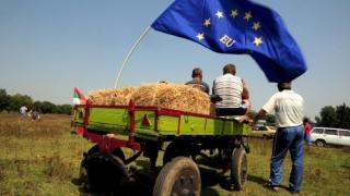 Cum pot accesa fermierii constănțeni fonduri europene?