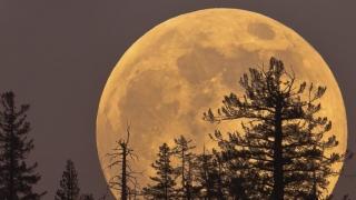 Super Luna face pe nebuna și mănâncă Geminidele