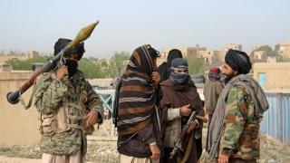 Talibanii i-au cerut lui Trump să retragă trupele din Afganistan