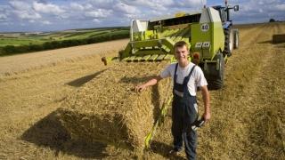 Tinerii nu vor să muncească în agricultură. Ce e de făcut?