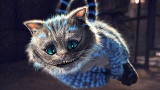 TOP 5 pisici în literatură. Care sunt cele mai cunoscute feline?