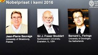 Trei cercetători, un Nobel la Chimie