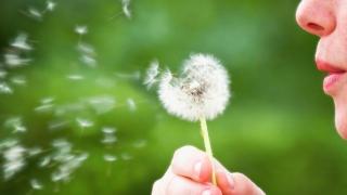 Trei tipuri de alergii provocate de mutații genetice!
