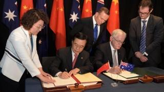 Trump adună bănuți din Asia