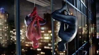 """Turiștii, prădați de """"Spider Man"""