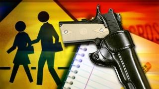 Cum contracarează SUA atacurile armate în şcoli?