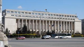 Cum poți fi angajat al Guvernului României? Intership-ul poate fi primul pas