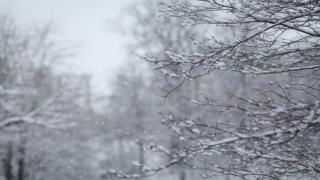 Cum va fi vremea în Dobrogea în următoarele două săptămâni