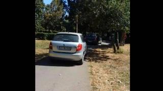 Curse de mașini, printre copii, în Parcul Tăbăcărie! Șoferii au fost prinși!