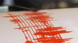 Un alt cutremur în România. Ce magnitudine a avut