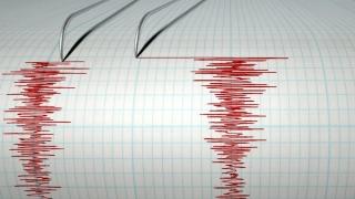 Cutremur fără victime în Mexic