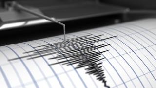 Replică a cutremurului de 5,8 grade, cu magnitudinea de 3,2 grade pe scara Richter