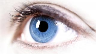 Vezi care sunt alimentele care ajută la păstrarea sănătății vederii!