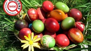 Vopseaua pentru ouă colorează cu multe E-uri!