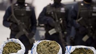 Zeci de traficanţi de droguri, săltaţi de poliţişti