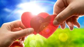 Se apropie Ziua Îndrăgostiților. Cum îți poți impresiona jumătatea!