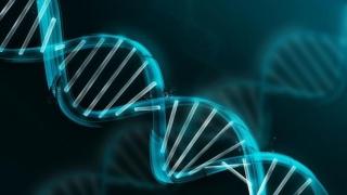 Demonstraţie în premieră mondială! Inteligenţa poate fi evaluată cu ajutorul unui simplu test ADN
