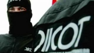 Grupare de proxeneți care acționa în Franța, destructurată de DIICOT