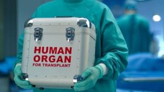 Dezbatere publică a proiectului Legii privind transplantul uman