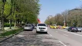 Primăria Municipiului Constanța a demarat acțiunile de dezinsecție