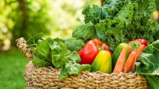 Dieta alcalină reîncarcă bateriile organismului