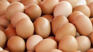 Alertă în România! Milioane de ouă, contaminate cu o substanţă interzisă