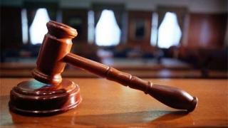 Instanța a respins cererea DNA de instituire a controlului judiciar în cazul Olguței Vasilescu