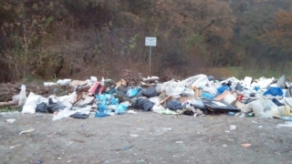 Documente găsite la gunoi, lângă Judecătoria Iaşi
