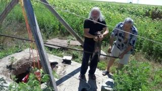 Un cățeluș, salvat dintr-o fântână din zona Industrială - Constanta