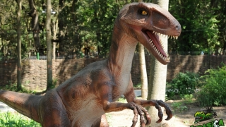 Singurul parc tematic de dinozauri de la malul mării