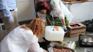 Muncă dată la gunoi! DSV a confiscat peste 1 tonă de carne improprie consumului