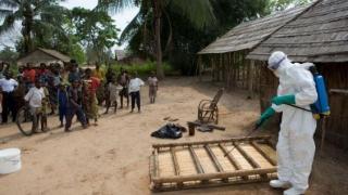 OMS: Încă nu se impun restricții de călătorie în Congo. Virusul Ebola continuă răspândirea