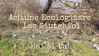 O zonă întinsă de pe lacul Siutghiol va fi igienizată! Vezi când și unde!