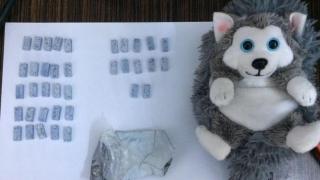 Ecstasy şi alte droguri de risc, scoase de pe piaţă de jandarmii constănţeni