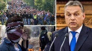 Zeci de imigranți dintr-un centru ungar de la frontiera cu România, în greva foamei