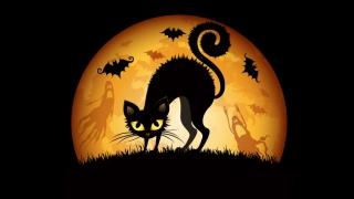 Scenarii de speriat pentru shoppingul de Halloween!