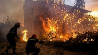 Stare de urgenţă pe insula grecească Evia. Sute de oameni, evacuaţi